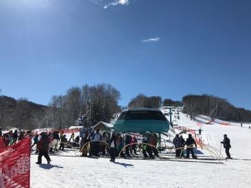 Mardi Gras Quad Lift